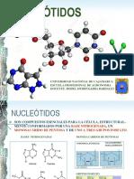 SINTESIS-DE-PROTEINAS.pdf