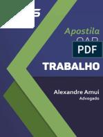 Apostila Direito Trabalho Alexandre Amui