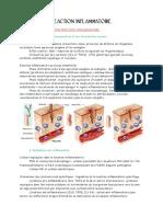 Reaction inflammatoire