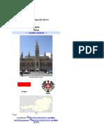 Referat Orase (Viena)