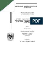 Estudio Energetico Para La Celulosa Tesis MENDOZAGONZALEZ