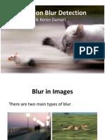 Motion Blur Detection
