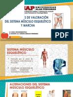 Intrumentos de Evaluación Músculo Esquelético Ok.pdf 2 (1)