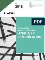 2018 17-07-27 Resolucion Modelo Lenguaje