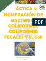 bacterias coliformes y fecales