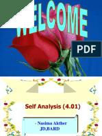 Self Analysis (4.01)