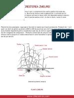 Cresterea-zmeurei.pdf