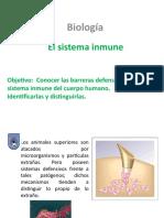 Clases Sistema Inmune