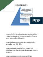 4. PROTEINAS.pptx