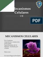 MECANISMOS-CELULARES
