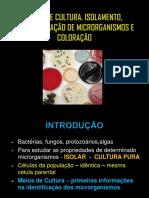 Aula 4 Isolamento e Caracterização de Microrganismos