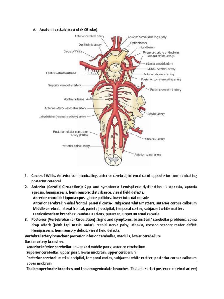 LO 1 | Ischemia | Stroke