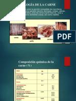 Microbiologia de Carne