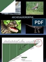 Diapsida Parte 2 Arcosauromorpha Kokubum RESUMIDO
