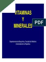 VitaminasyMinerales_DREMR2010.pdf