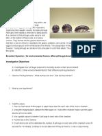 pill bug behavior
