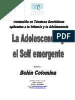 Adolescencia y Self Emergente