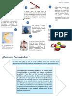 Expo Pacto Andino
