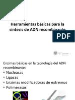 04 Herramientas básicas en la tecnología del ADN recombinante.pdf