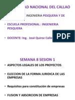 Semana 8 -1 y Evaluacion de Proyectos 2015-V Unac