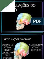 3ª-AULA ART. DA CABEÇA.pdf