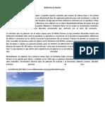Definición de Planicie.docx