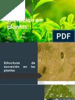Excreción en plantas (1).pptx