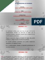REFORMAS 3°.pptx
