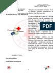 Primeros Auxilioa Cruz Roja Peruana