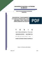 tesis_noriega_espindola.pdf