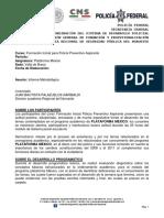Informe Metodolo_gico de Plataforma Me_xico
