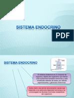 endocrino_resumido