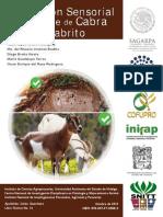 Evaluacion Sensorial de La Carne de Cabra y Cabrito