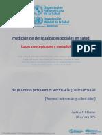 02 Taller Desigualdades - Bases Conceptuales y Metodológicas - Mujica