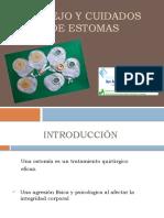 Expo Estomas Bueno