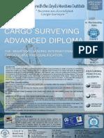 AdvanceDiplomaCS Brochure