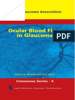 WGA6-Ocular Blood Flow in Glaucoma