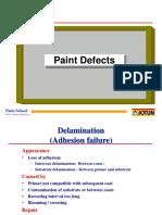 8 Paint Defects