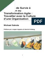 Un Guide de Survie c3a0 l Adoption Ou Transformation Agile Travailler Avec La Culture d Une Organisation