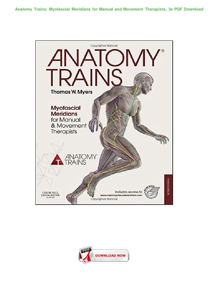 Anatomy-Trains--Myofascial-Meridians-for-Manual-and-Movement ...