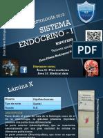 Atlas Tomo i Hipofisis 2014.1