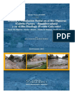 Erosión e Inundación Fluvial Río Higueras