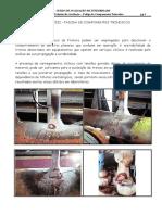 Curso Petrobras CapVIII Fadiga1