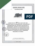 004_directiva_general_2013 GRJ.pdf