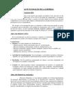 resumen areas funcionales.pdf