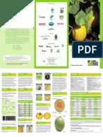 foldermelao.pdf