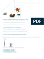 Agosto Ciencias Reino Plantae