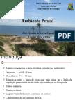 Ambiente_Praial