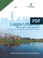 Guia de Aprendizaje LAGOS URBANOS Final