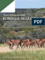 revista_aves_argentinas37_petrificados[1].pdf
